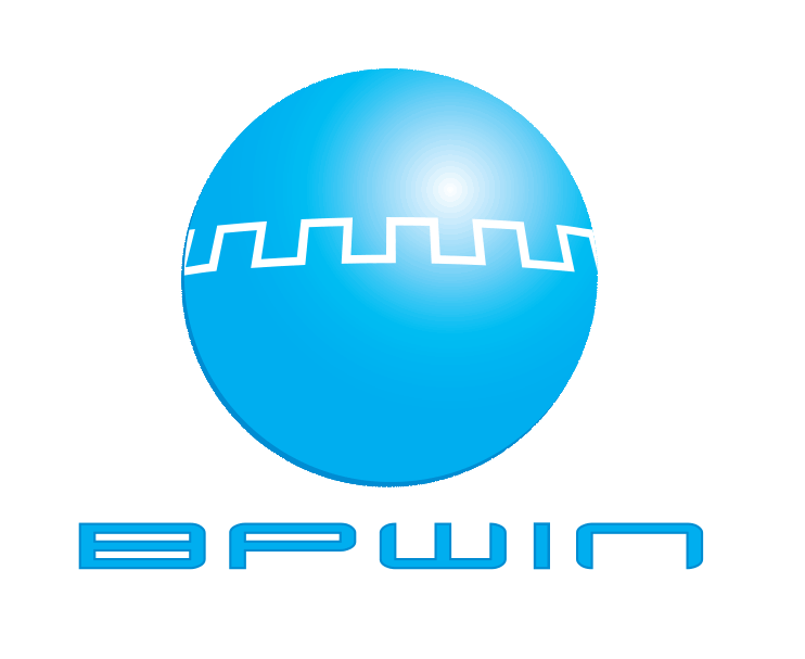 BPWin 7.0.6 Release Notes